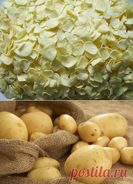 Сушеный картофель впрок - как приготовить сушеный картофель дома. » Сусеки