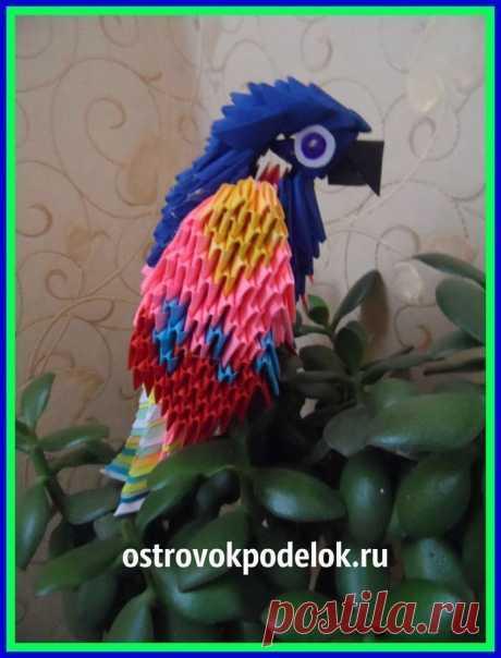 """Попугай в технике """"модульное оригами"""" (мастер-класс)"""