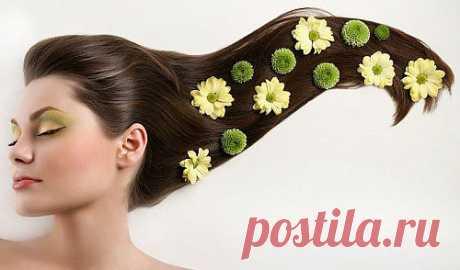 Натуральное масло для волос CHANDI