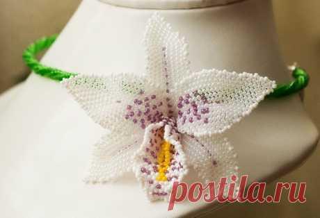 Орхидея из бисера — DIYIdeas
