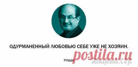 25 ambiguous quotes from the Indian wise man Salman Rushdie