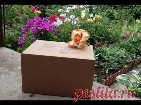 Как отправить растения почтой