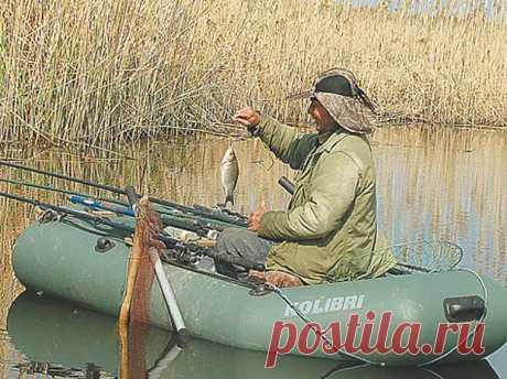 Рядом с плывунами - Охота и рыбалка - медиаплатформа МирТесен