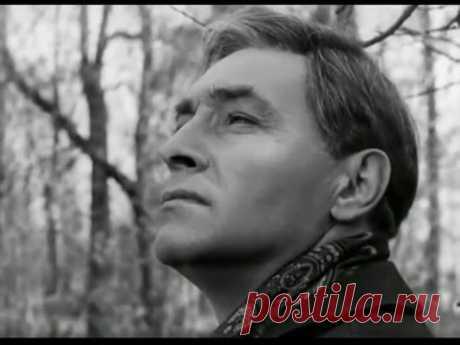 "Микаэл Таривердиев. ""Дороги"". Интермеццо из к/ф ""17 мгновений весны"" - YouTube"