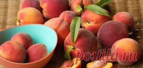 Названы лучшие фрукты, рекомендованные при онкологических заболеваниях | Офигенная