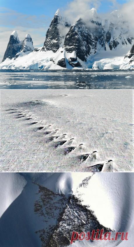 Видео: необъяснимые находки в Антарктиде, которые видны на снимках из космоса