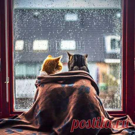 Вдвоём хорошо в любую погоду :)