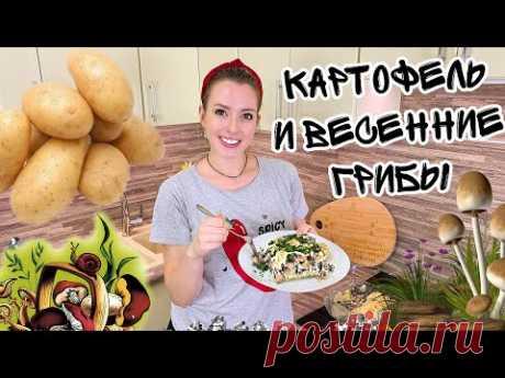 ЗАПЕЧЕННАЯ КАРТОШКА С ГРИБАМИ (Картофель с грибами в духовке) КАК ГОТОВИТЬ СТРОЧКИ И СМОРЧКИ - YouTube