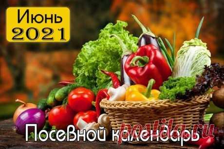 Лунный посадочный календарь в Украине на Июнь 2021 г.