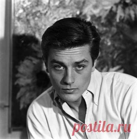 8 ноября исполняется 85 лет известному французскому актеру Алену Делону. Ален Делон – знаменитый французский актер театра и кино, легенда мирового кинематографа. Пик его популярности пришелся на 60-80-е годы XX века – именно тогда этот голубоглазый француз сводил с ума миллионы женщин и считался одним из главных секс-символов эпохи. Его имя уже давно стало нарицательным для обозначения привлекательного мужчины, способного влюбить в себя с первого взгляда. Ален Делон, наст...