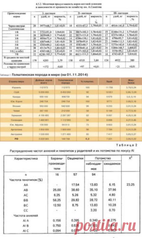 Сравнительная оценка адаптационнойспособности бычков различных пород - БиоКорова