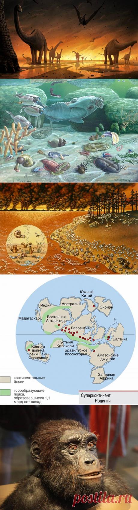История Земли за полчаса