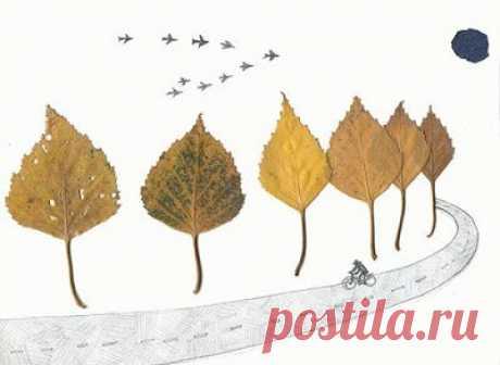 Сушка осенних листьев для аппликаций и подготовка к работе Из высушенных листьев, цветов и трав можно создать неповторимые картины — как изысканно сложные, так и совершенно простые, которые могут сделать даже маленькие дети. Приемов изготовления карт…