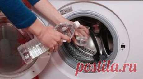 Чистка стиральной машины от плесени | Блог сайта Muza.Name