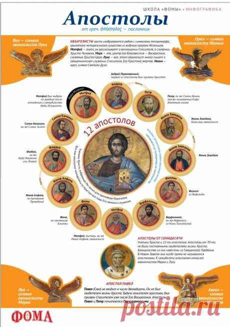 Апостолы (инфографика)