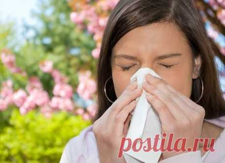Как навсегда избавиться от аллергии — 5 рецептов для взрослых и детей