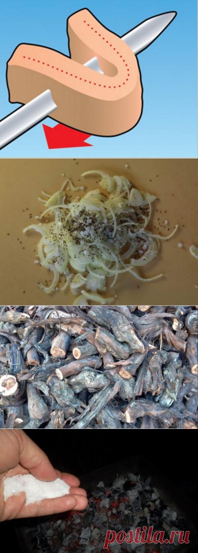 10 секретов приготовления правильного шашлыка
