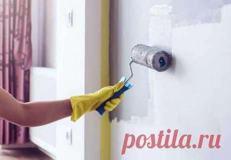 5 ошибок, из-за которых краска на стенах не продержится долго — Строительство и отделка — полезные советы от специалистов