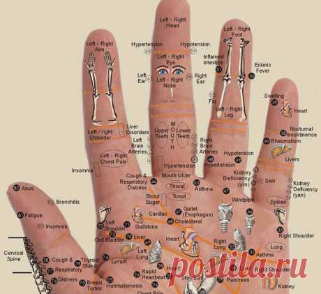 Капиллярный массаж рук: улучшает кровообращение и укрепляет сердечно-сосудистую систему