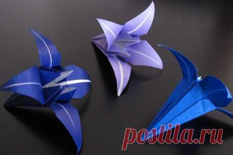 Пошаговая схема как сделать оригами цветок из бумаги Пошаговая схема как сделать оригами цветок из бумаги своими руками. Берём квадратный лист любого цвета. Складываем его пополам ровными сторонами