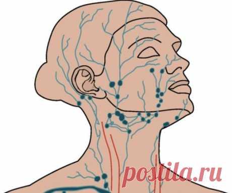 Лимфодренажный массаж подбородка | Golbis