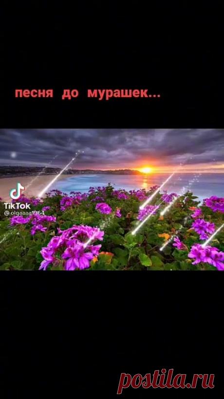 ff1258b3f3deadbe8335c23851674806.mp4
