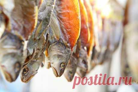 Как засушить рыбу   Рекомендательная система Пульс Mail.ru