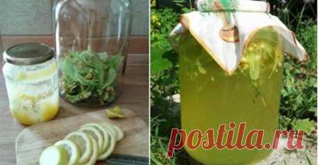 Липовый лимонад — ароматный и вкусный, очень-очень полезный. В жару — самый лучший напиток! - umn1chka.ru