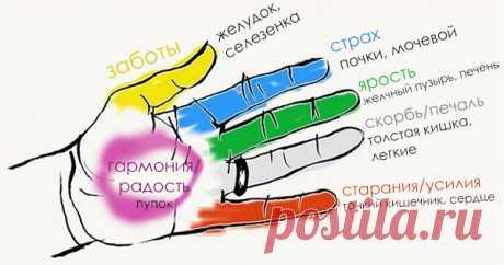 Каждый палец соединен с 2-мя органами: японские методы исцеления за 5 минут! - Стильные советы