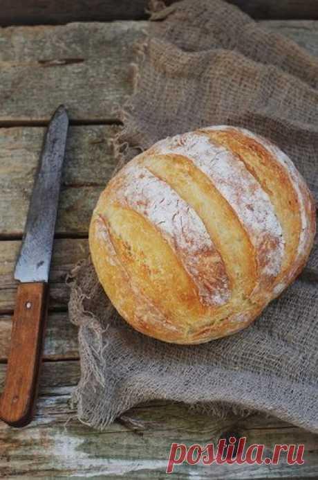 Хлеб без замеса на светлом пиве.