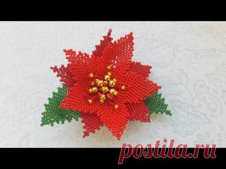 Рождественский цветок из бисера. Christmas star. Пуансетия