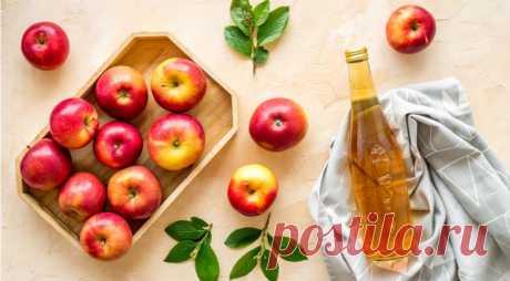 Как приготовить домашнее яблочное шампанское: лучший способ использовать яблоки на Supersadovnik.ru