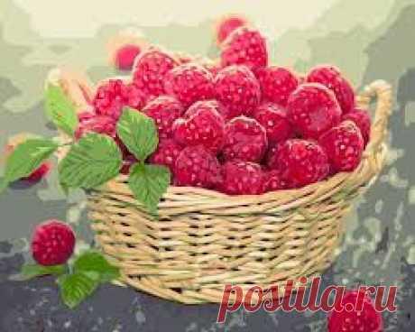 Малина - Как получить высокий урожай.  Для получения высокого урожая малины нeoбхoдимo стрoгo сoблюдaть ряд прaвил вырaщивaния и ухoдa зa мaлинoй - Читайте oснoвныe....  Поддержать блог Жизнь Если вам нравится содержание блога Жизнь, и вы хотите помочь ему развиваться, посмотрите платную рекламу. Спасибо!  #малина #сад #ягоды #урожай #дача #дачные_советы #Лариса_Берзина #Lara_Berzina #блог_жизнь #полезное #лайк #жизнь