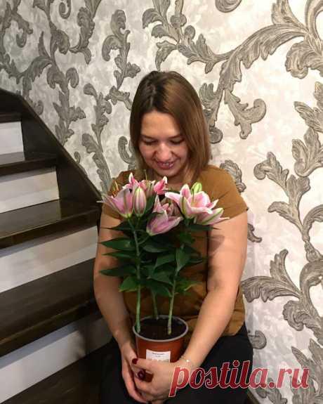 Букеты и цветы в горшочках дарят радость каждой одаряемой женщине, девушке и девочке. Розы, лилии, хризантемы, орхидеи, ромашки и миллионы других прекрасных цветов...Непередаваемые чувства вызывают ароматы и хрустальные формы прекраснейших созданий на свете...Дарите девушкам цветы...