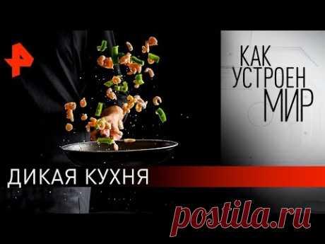 """Дикая кухня. «Как устроен мир"""" с Тимофеем Баженовым (20.03.20)."""