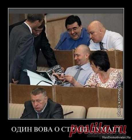 Веселые картинки и гифки)))