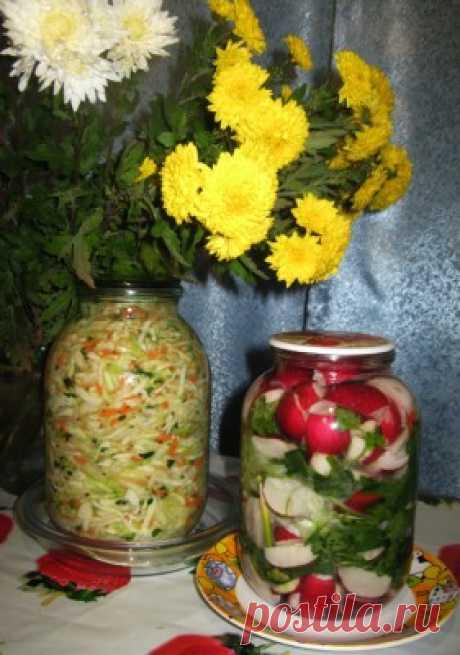 Los encurtidos - el rabanillo fermentado con la verdura (la cocina coreana): las Colaciones y los bocadillos