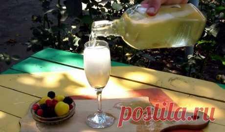 Шампанское из листьев смородины!