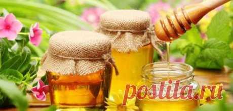 Диета с лимоном и медом - Потеряйте 3 кг всего за 3 дня! - Советы на каждый день