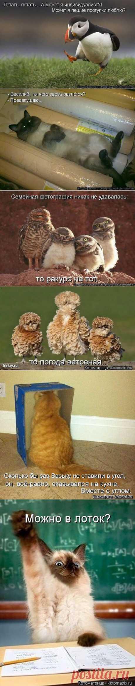 Давайте улыбнёмся)))   ОБОРЖАКА ;)