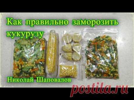 Как заморозить кукурузу на зиму,  ассорти на зиму, заморозка овощей на зиму.