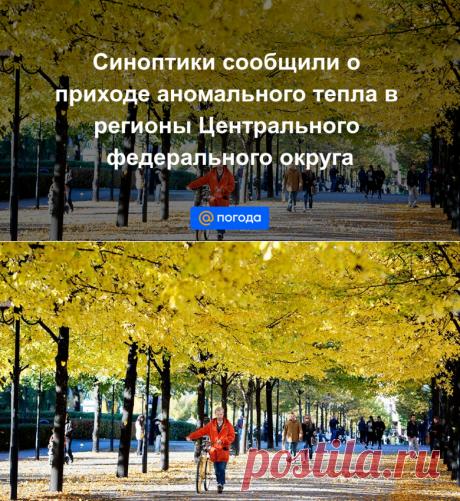 Синоптики сообщили о приходе аномального тепла в регионы Центрального федерального округа - Погода Mail.ru