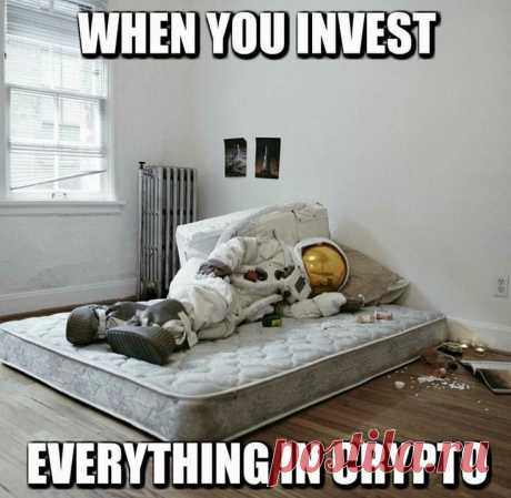 When You Invest Everything In Crypto | Gag Bee
