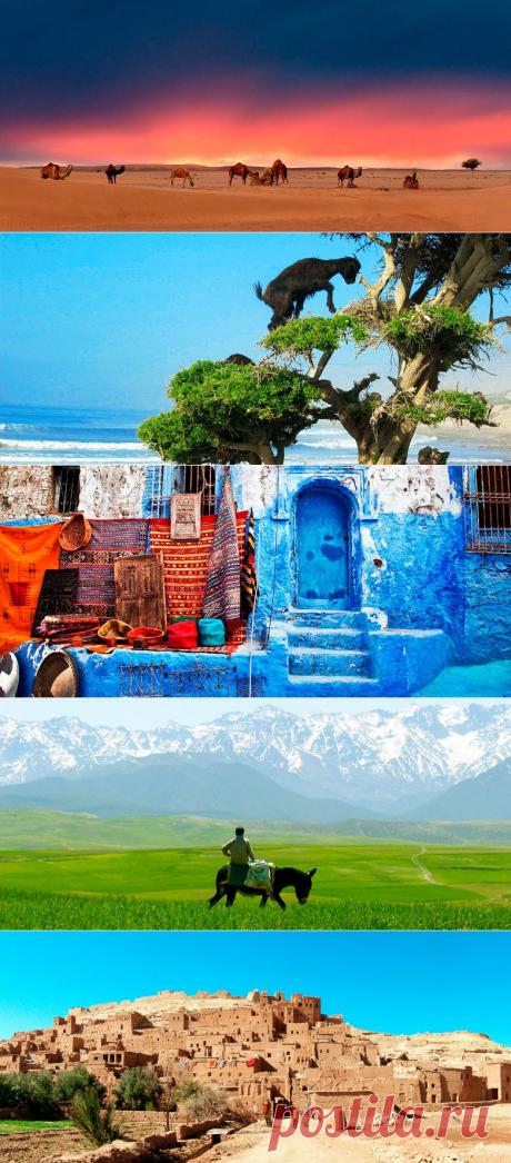 Где побывать и что посмотреть в Марокко / Туристический спутник