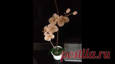 ОРХИДЕЯ ПЕРСИКОВАЯ из БИСЕРА. Tutorial: Beaded ORCHID. Часть 3/3. БИСЕРОПЛЕТЕНИЕ для НАЧИНАЮЩИХ В этой части я показываю как собрать весь цветок и посадить его в горшок Часть 1: https://www.youtube.com/watch?v=gxzeGVnA-78 Часть 2: https://www.youtube.co...