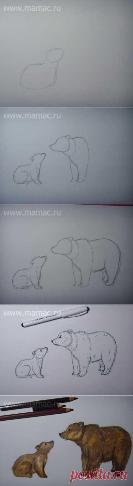 Научитесь рисовать сами и научите своих детей. Весь блог про рисование: лягушки, козы, петушка, котика и пр.