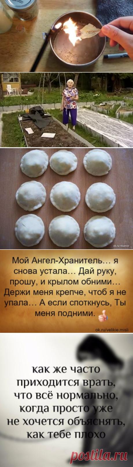 (58) Одноклассники