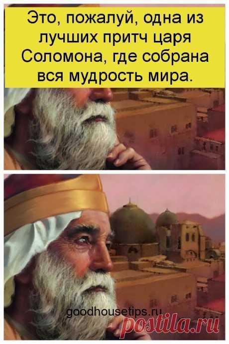 Это, пожалуй, одна из лучших притч царя Соломона, где собрана вся мудрость мира. - Коллекция домашних рецептов
