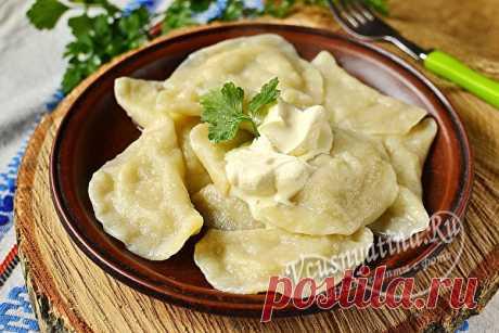 Вареники с сырой картошкой и салом: пошаговый рецепт