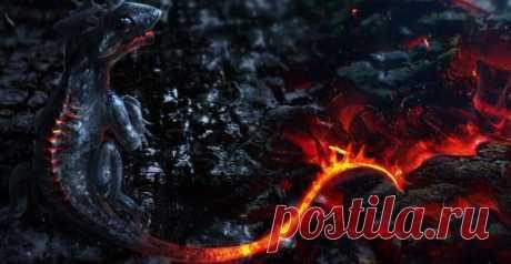 Саламандра огненная ящерица мифический надежный тотем Знакомимся с огненным элементалом, обладателем огромной силы, помощником и защитником, способным поделиться стойкостью и мужеством.Саламандра огненная